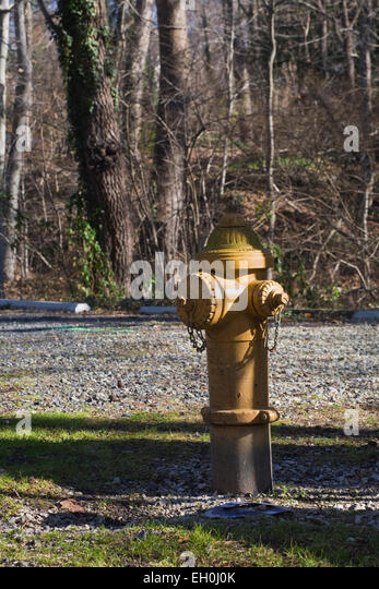 Fire Hydrant in a US nature reserve. - Stock Image