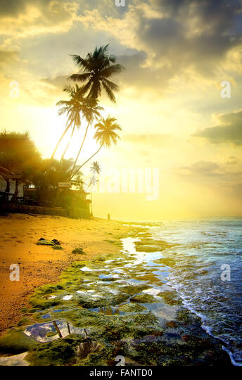 Evening on a beach of the ocean - Stock Image
