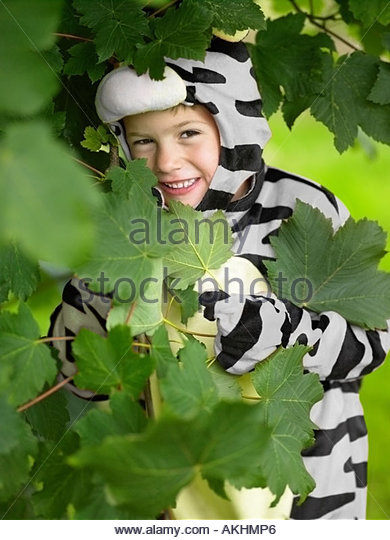Boy in a zebra costume hiding in leaves - Stock Image