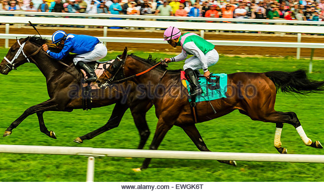 Horse racing on the turf track at Keeneland  Racecourse, Lexington, Kentucky USA. - Stock Image