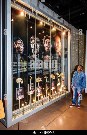 Johannesburg South Africa African Maropeng Visitors Centre center hominin site human ancestor Cradle of Humankind - Stock Image