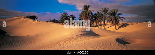 Sand dunes Tunisia - Stock Image