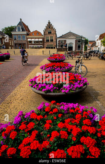 Flowers in Edam, Holland, Netherlands - Stock Image
