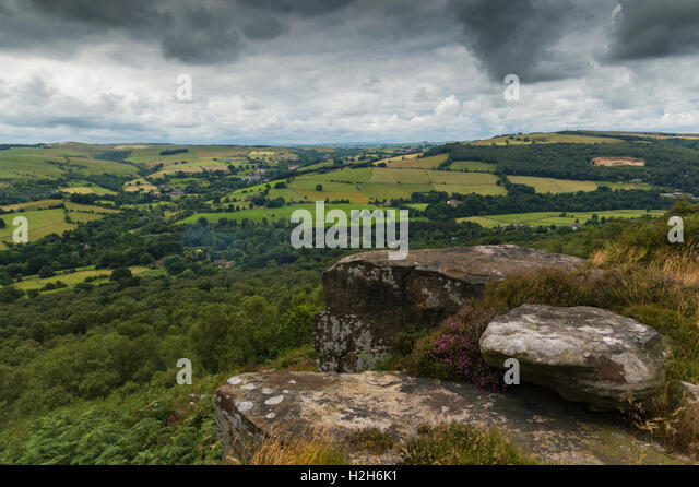 Heather on the top of the hill at Froggatt Edge, in the Peak District, Derbyshire - Stock Image