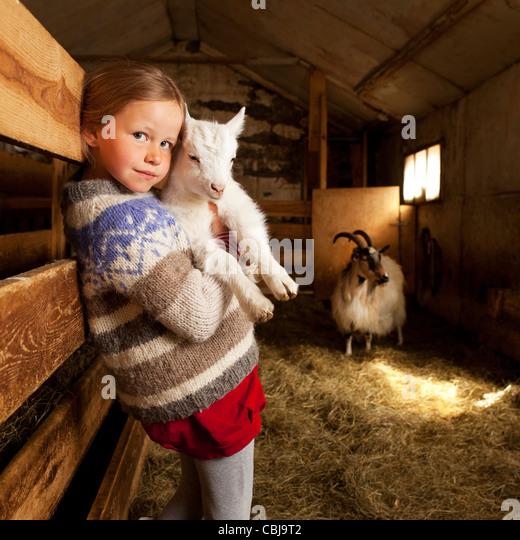 Girl holidng goat kid, Goat farm Iceland - Stock Image