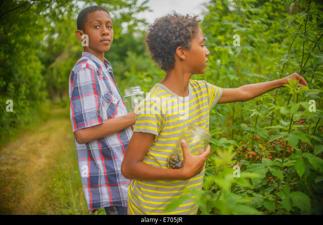 Boys picking berries - Stock-Bilder