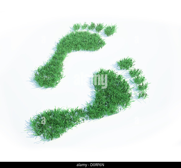 Ecological footprint - Stock Image