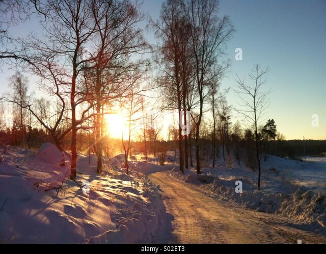 landscape in winter - Stock Image