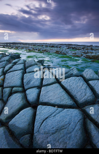 Cracked limestone ledges at Kilve in Somerset, England. Spring (May) 2009. - Stock Image