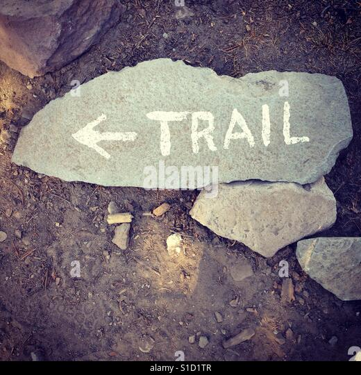 Mount Shasta trail to Horse Camp - Stock Image