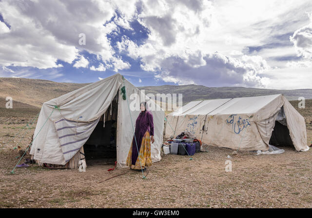 basseri nomads of iran Amazonin - buy nomads of south persia: basseri tribe of the khamseh confederacy book online at best prices in india on amazonin read nomads of south persia.