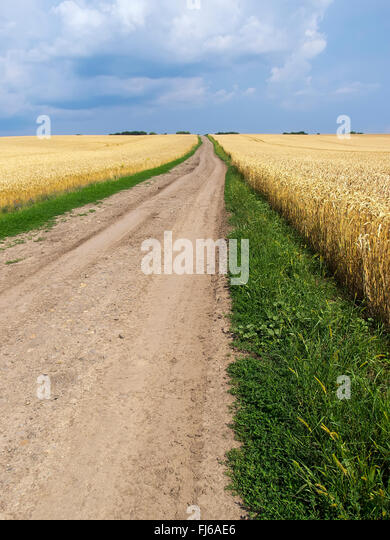 earth road fields countryside - photo #38