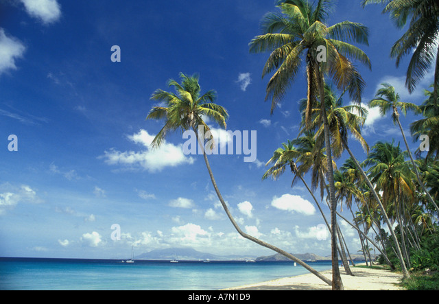 tropical beach with palms and islands in the background - Stock Image