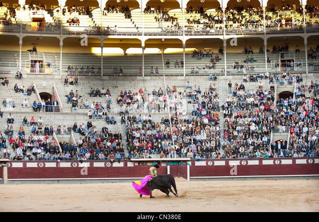 Bullfighter with bull in Las Ventas bullring with audience, Madrid - Stock-Bilder
