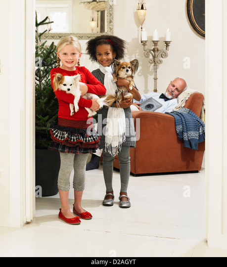 Girls holding dogs by Christmas tree - Stock Image