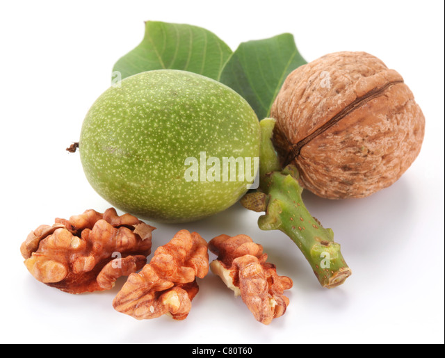 Green walnut; peeled walnut and its kernels. Isolated on a white background. - Stock Image
