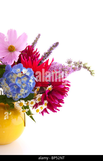 Garden flower bouquet with Hydrangea cosmos and others - Stock Image
