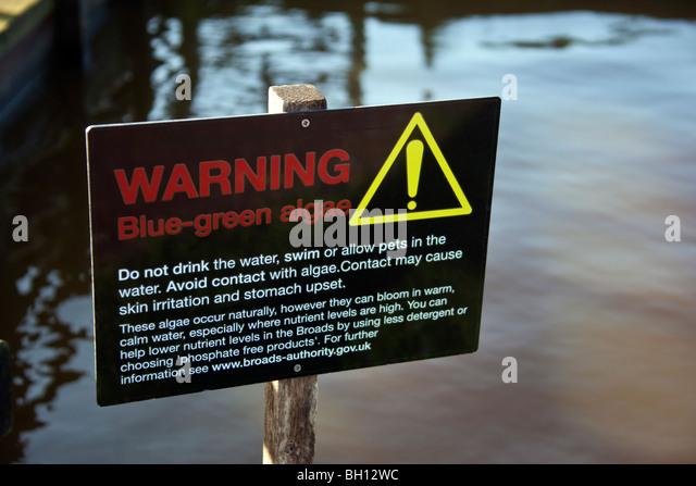 Warning sign: Blue-Green Algae - Stock Image