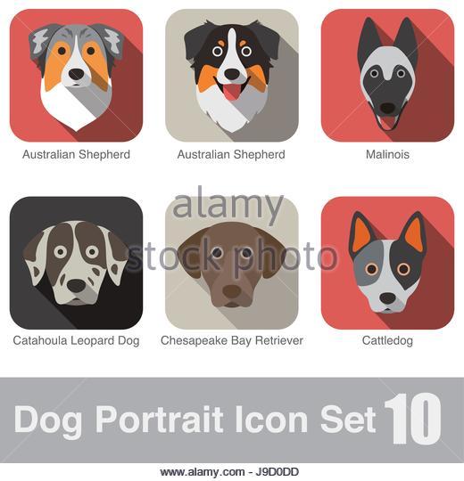 Character Design Icon : Chesapeake design stock photos