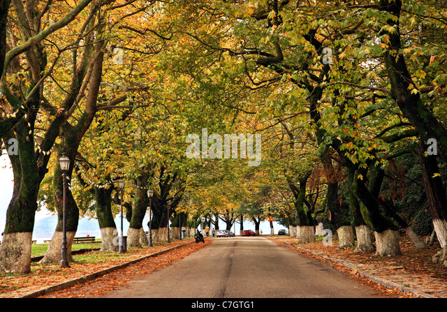 The picturesque and romantic lakeside road of Ioannina (or 'Giannena') town, Epirus, Greece - Stock-Bilder