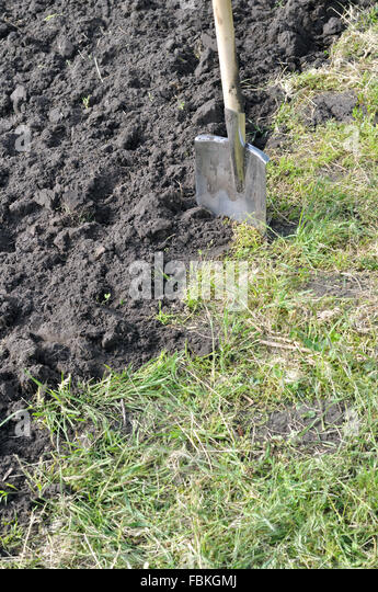 how to prepare ground for vegetable garden