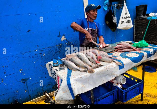 Panamanian food stock photos panamanian food stock for Sea city fish and chicken
