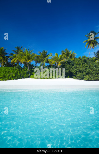 Tropical beach, Maldives, Indian Ocean, Asia - Stock Image