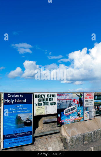 Advertising billboards on the sea wall at Seahouses Harbour, Northumbria, England. - Stock Image