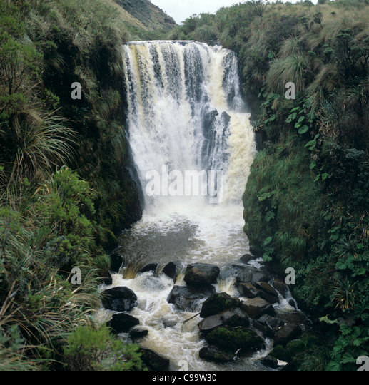 Waterfall in the High Andes, Colombia, brown with tannins from the mountain vegetation - Stock Image