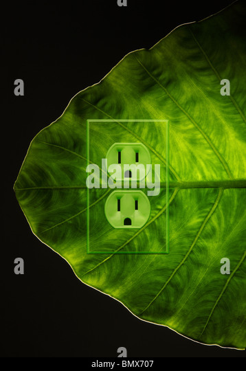 A green plant leaf with an electrical power outlet - Stock-Bilder