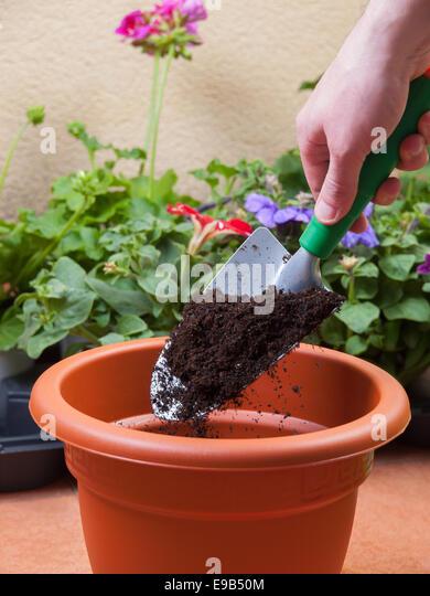 Gardener digs a hole 1