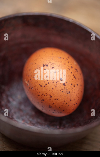 Close up of brown egg in bowl - Stock Image