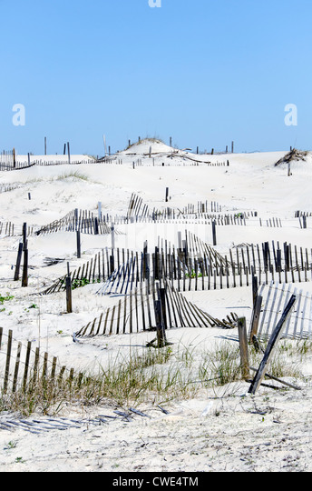 Series of sand fences for sand dune stabilization, restoration and rebuilding Outer Banks North Carolina - Stock Image