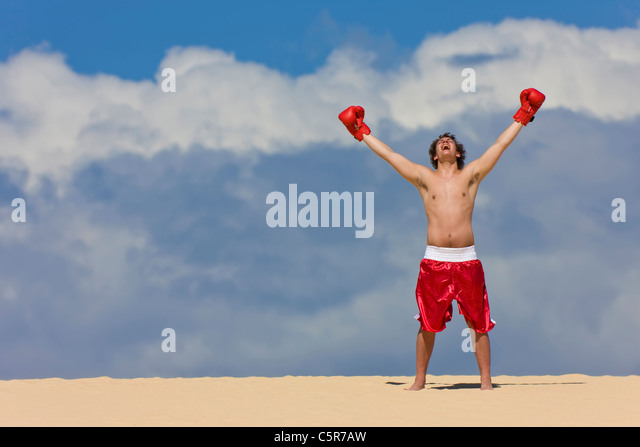 Boxer celebrates on top of the World. - Stock-Bilder