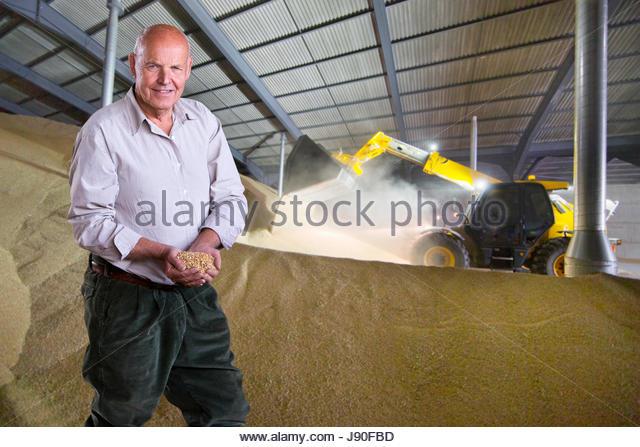 Portrait Of Farmer Inspecting Wheat Crop In Grain Store - Stock-Bilder