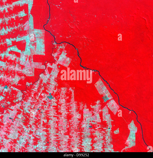 False-colour satellite image of deforestation in Rondonia State, Brazil in 2000. Pink and brown areas are cleared - Stock Image