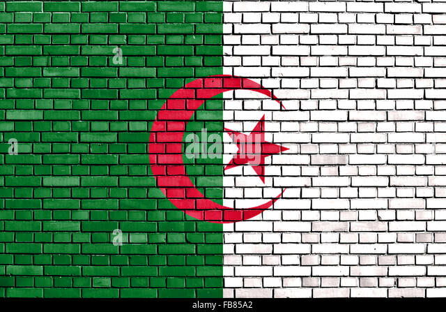 flag of Algeria painted on brick wall - Stock Image