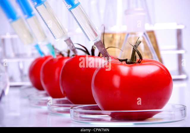 Genetically modified fruits and vegetables - Stock Image