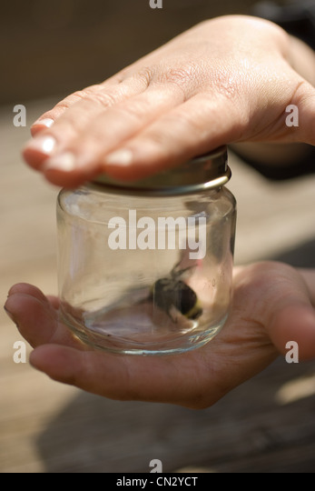 Child with insect in jar - Stock Image