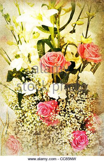 rose paper - Stock Image