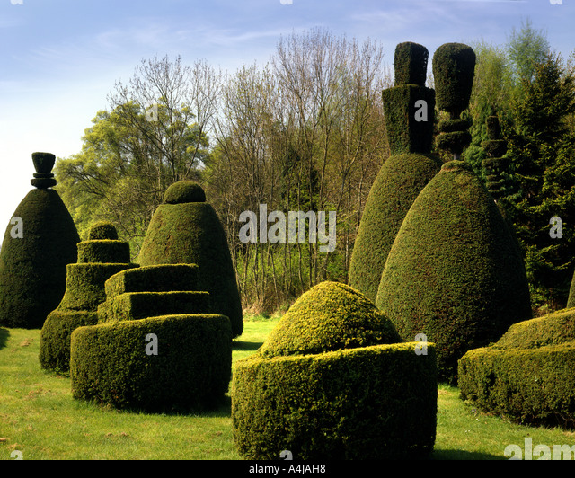 GB - RUTLAND:  Clipsham Yew Tree Avenue - Stock Image