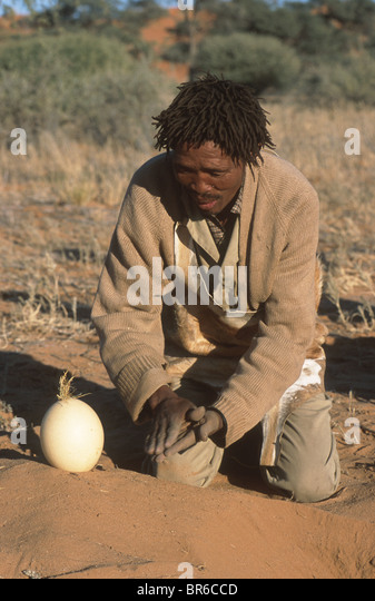 San man and ostrich egg - Stock Image