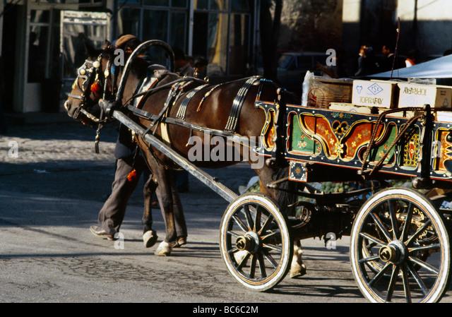 Edirne Turkey Horse And Cart - Stock-Bilder