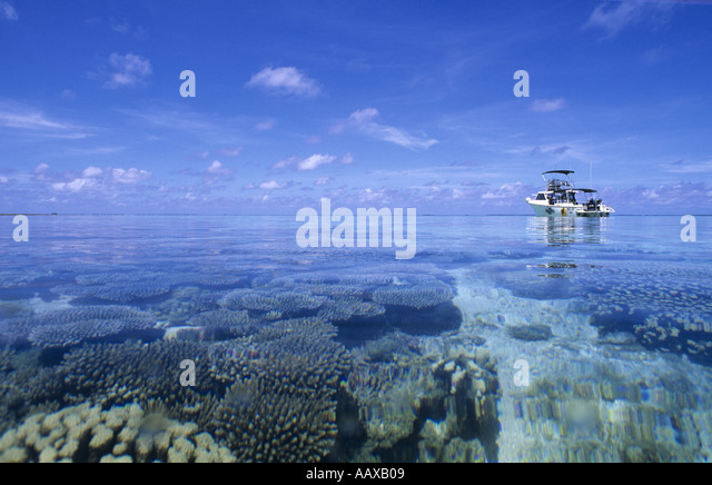 PRO 42 dive boat over beautiful coral reef in the Western Pacific - Stock Image