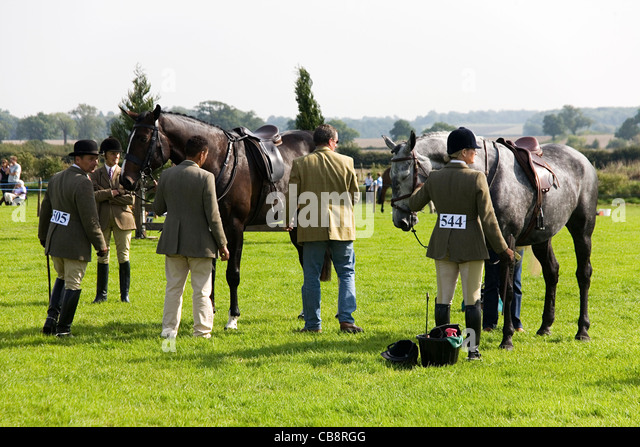 Judging of the Working Hunter Class at an Agricultural Show - Stock Image