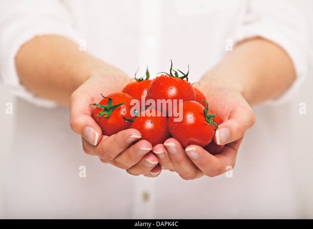 Female's both hands holding fresh tomatoes - Stock Image