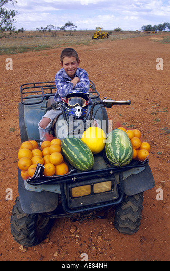 Fresh produce brought in by weekly air mailman, outback Australia - Stock Image