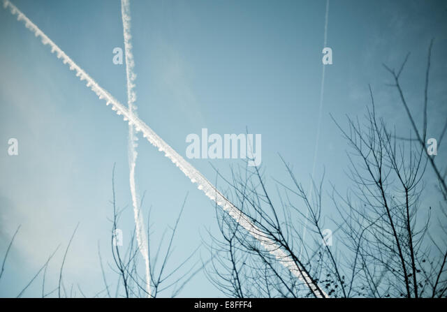 Contrails over trees - Stock Image