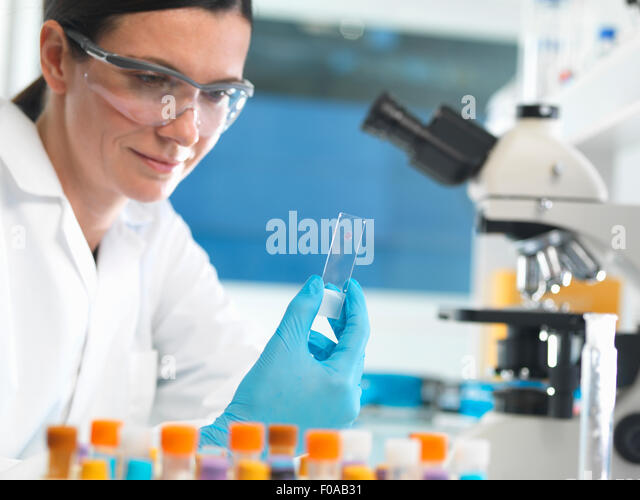 Scientist holding microscope slide with blood sample in lab - Stock Image