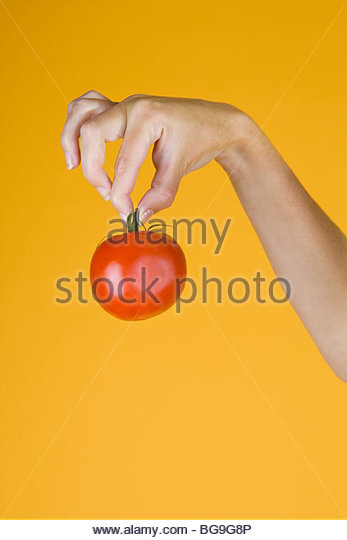 A Hand Holding A Tomato - Stock Image